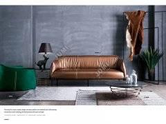 真皮沙发的皮质和框架